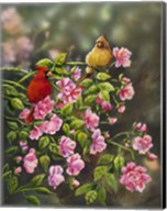 Cardinals with Roses Fine-Art Print