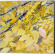 Golden Leaves Fine-Art Print