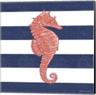 Seahorse Stripe Fine-Art Print