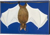Bat Fine-Art Print