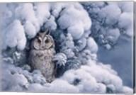 Long-Eared Owl Fine-Art Print