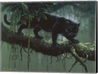 Black Jaguar Fine-Art Print