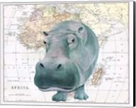 African Hippo Fine-Art Print