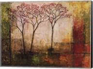 Morning Luster II Fine-Art Print