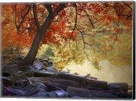 Under The Maple Tree Fine-Art Print