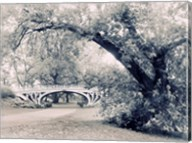 Central Park Gothic Fine-Art Print