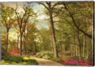 The Azalea Garden Fine-Art Print
