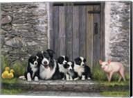 Farm Animal Stable Fine-Art Print