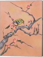 Asian Bird 1 Fine-Art Print