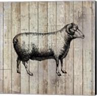 Farm Life 2 Fine-Art Print