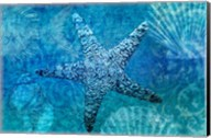 White Starfish Fine-Art Print