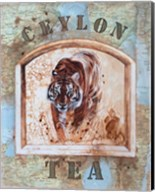 Ceylon Tea Fine-Art Print