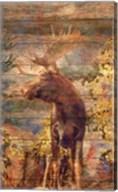 Majestic Moose Fine-Art Print