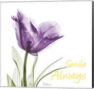 Smile Always Tulip Fine-Art Print
