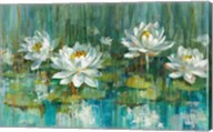 Water Lily Pond Fine-Art Print