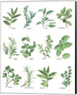 Herb Chart Fine-Art Print