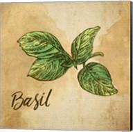 Basil on Burlap Fine-Art Print