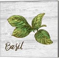 Basil on Wood Fine-Art Print