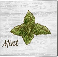 Mint on Wood Fine-Art Print