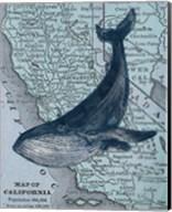 California's Grayback Whale Fine-Art Print
