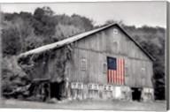 Patriotic Farm II Fine-Art Print