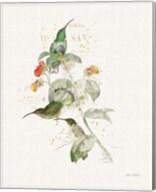Colorful Hummingbirds III Fine-Art Print