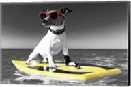 Pop of Color Surf's Up Dog Fine-Art Print