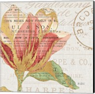 Bookshelf Botanical III Fine-Art Print