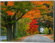 New Hampshire, Andover Autumn color, England home Fine-Art Print