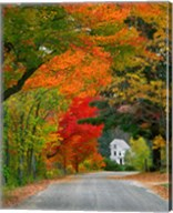 Road lined in fall color, Andover, New England, New Hampshire Fine-Art Print