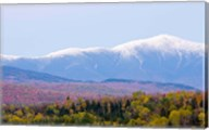 Mount Washington, Bethlehem, New Hampshire Fine-Art Print