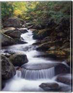 Gordon Water Falls, Appalachia, White Mountains, New Hampshire Fine-Art Print