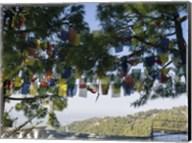 Prayer Flags, Upper Dharamsala, Himachal Pradesh, India Fine-Art Print