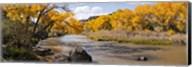 Rio Grande River, Pilar, New Mexico Fine-Art Print