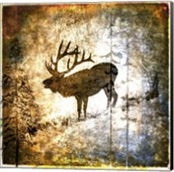 High Country Elk Fine-Art Print