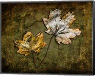 Metallic Leaf 2 Fine-Art Print