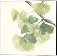 Gingko Leaves II Light Fine-Art Print