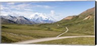 Mount McKinley and Thorofare Pass, Denali National Park, Alaska Fine-Art Print