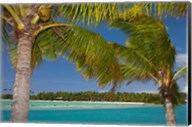 Palm trees and lagoon entrance, Musket Cove Island Resort, Malolo Lailai Island, Mamanuca Islands, Fiji Fine-Art Print