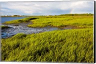 Salt Marsh side of Long Beach,  Stratford, Connecticut Fine-Art Print