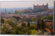 Bratislava Castle, Bratislava, Slovakia Fine-Art Print