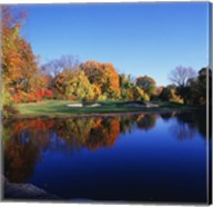 Trees in a golf course, Patterson Club, Fairfield, Connecticut Fine-Art Print