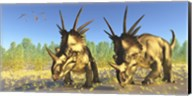 A flock of Pterodactylus fly above two Styracosaurus Dinosaurs Fine-Art Print