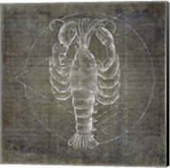 Lobster Geometric Silver Fine-Art Print