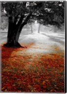 Autumn Leafs Fine-Art Print