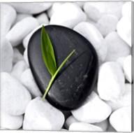 Zen Stone Fine-Art Print