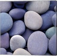 Purple Pebbles Fine-Art Print