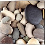 Brown Pebbles Fine-Art Print