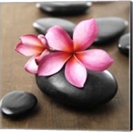 Zen Pebbles 3 Fine-Art Print