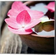 Zen Bowl Fine-Art Print